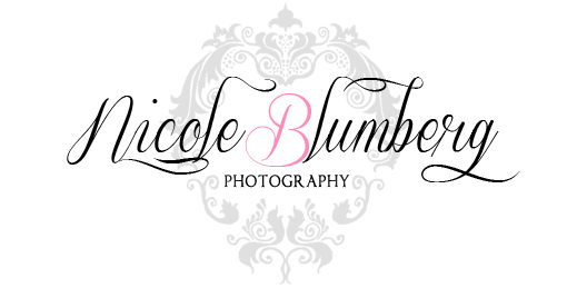 Nicole Blumberg Photography logo